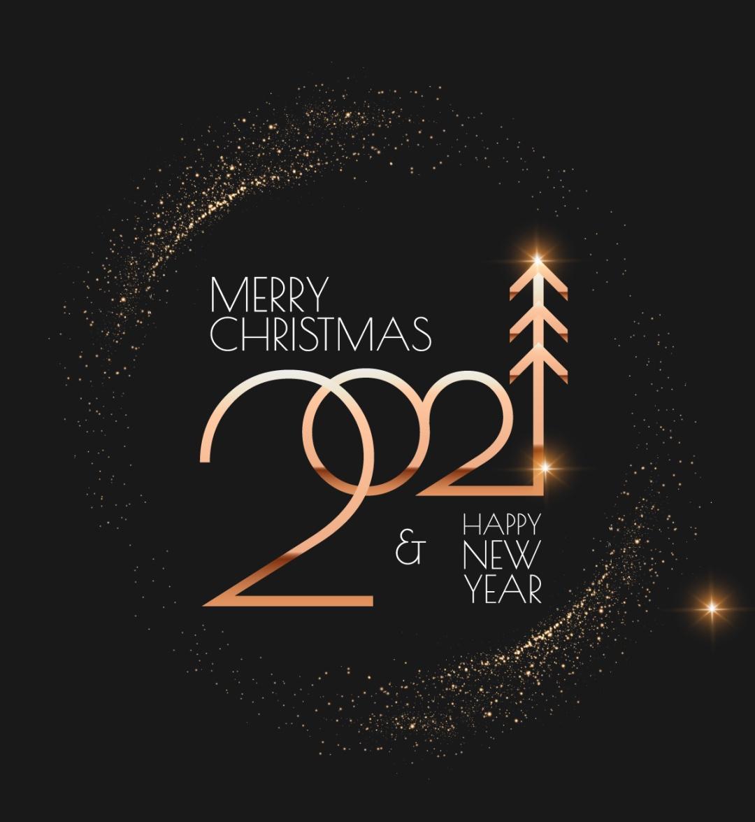 Pleyel & Christmas   普雷耶邀您共飨 曼妙圣诞乐章